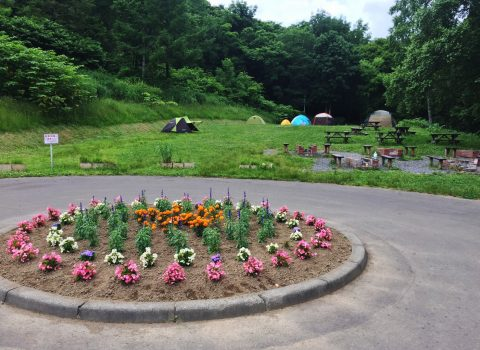 Asahigaoka Park Camping Site
