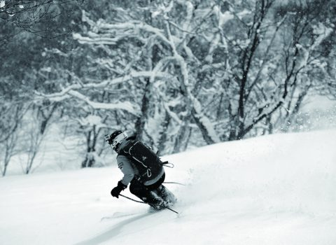 NISEKO POWDER GUIDE