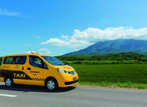 Sprint Taxi