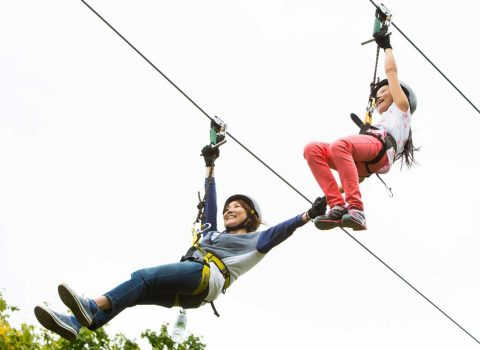 Pure - Zip Line Guided Tour