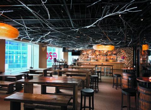 Ezo Pub