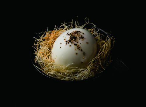 Modern Japanese Restaurant「acorn」