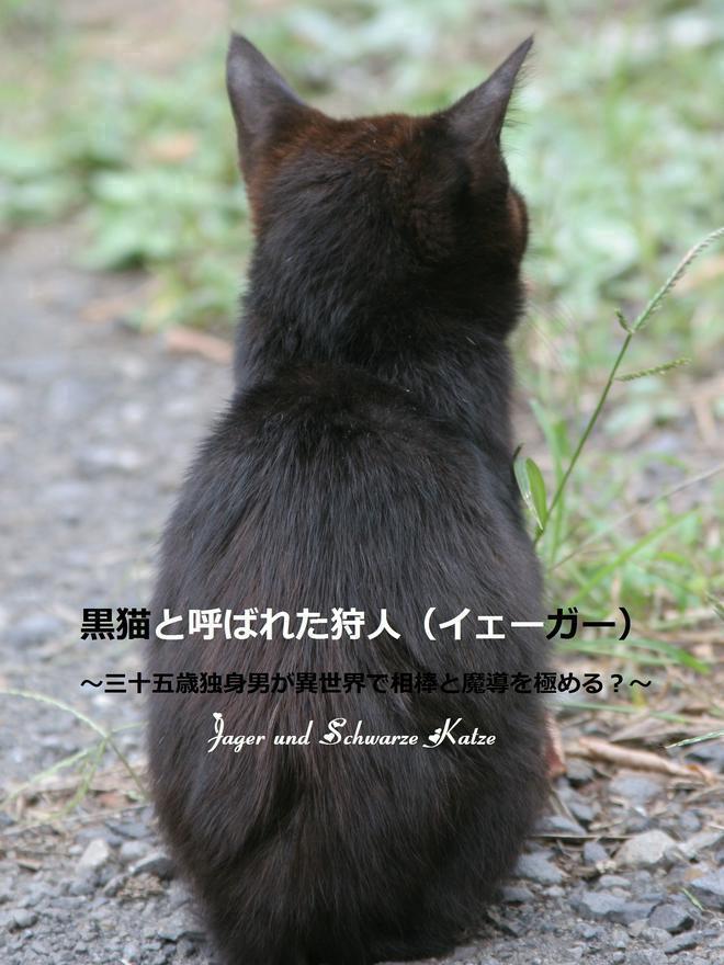 黒猫と呼ばれた狩人(イェーガー)~三十五歳独身男が相棒の黒猫とがんばります~