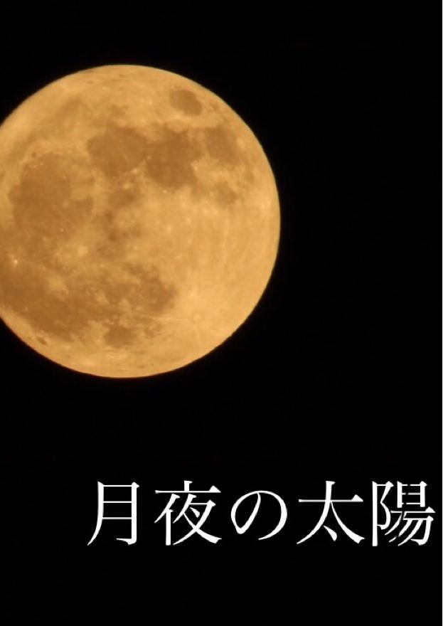 月下の太陽        〜人と人ならざる者達の幻想曲〜