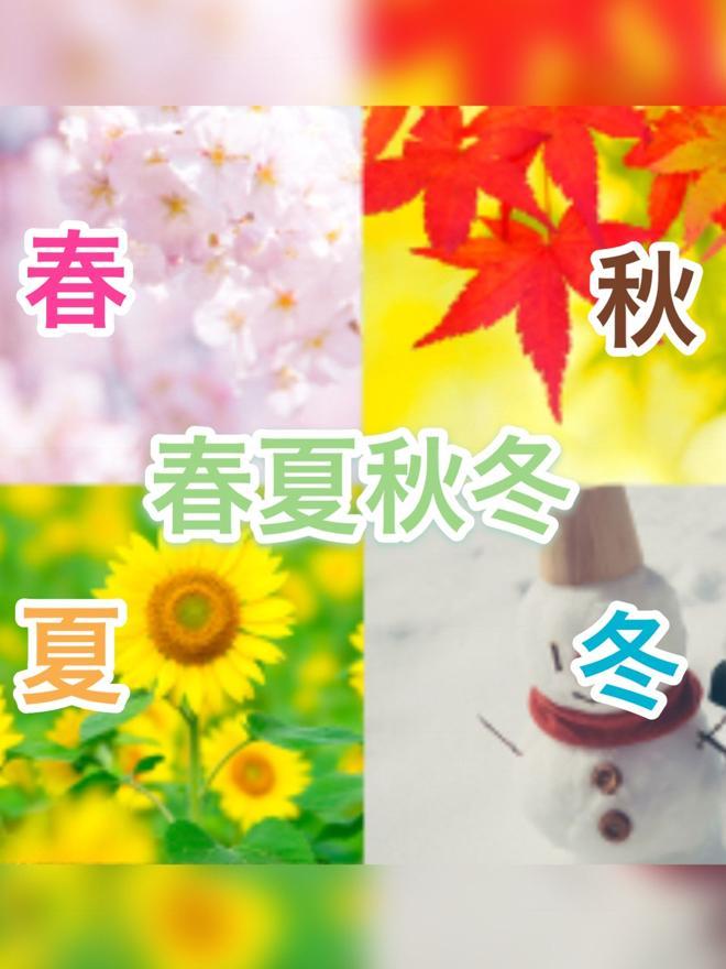 春夏秋冬〈シーズン〉〜異世界を翻弄する最強4人兄弟〜
