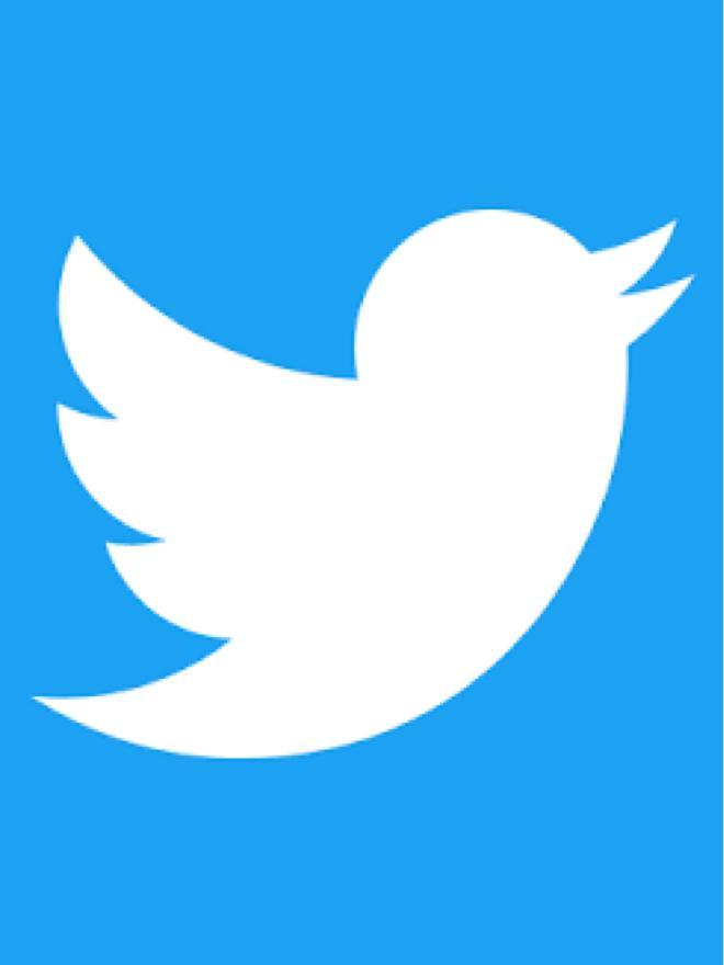 青い鳥の世界(仮)