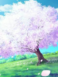 桜の木の下でただ一人待つ