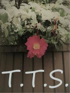 T.T.S.