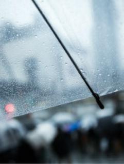 君が忘れた折りたたみ傘