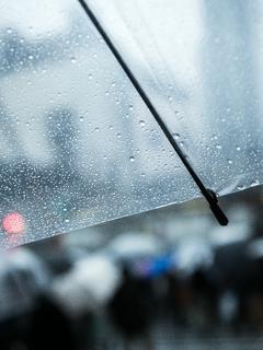 雨と傘と彼と私