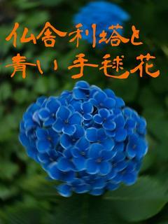 仏舎利塔と青い手毬花