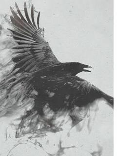 鴉から始まる成り上がり