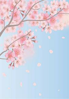 桜幽幻録書