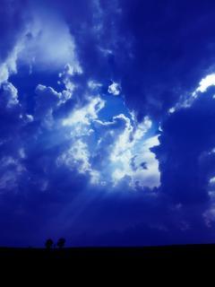 キリストにAI開発してもらったら、月が地球に落ちてきて人類滅亡の大ピンチ! 前代未聞、いまだかつてない物語があなたの人生すら変えてしまう ~ヴィーナシアンの花嫁~