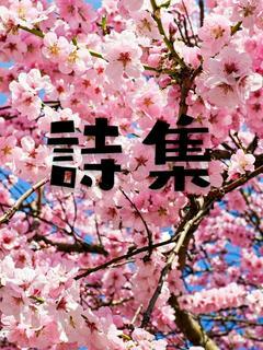 詩集※恋・愛※