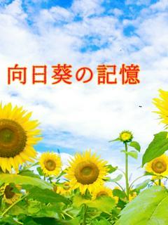 向日葵の記憶