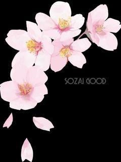 薄桜記 1~彩~【いろ】 なろう、カクヨムでレビュー頂きました。そろそろ佳境!お見逃し無く。