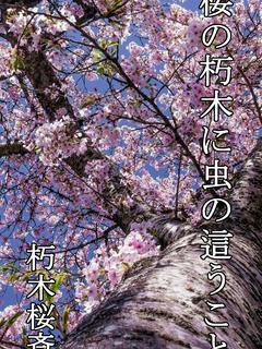 桜の朽木に虫の這うこと