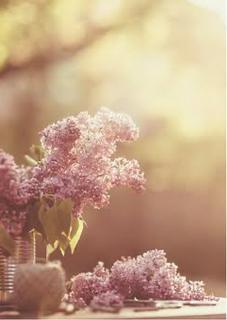 茜色の空に願う