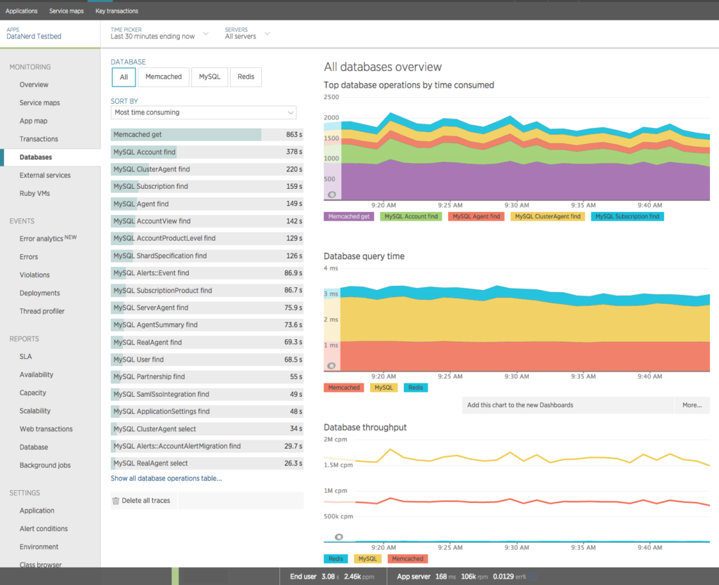 New Relic APM Database Page