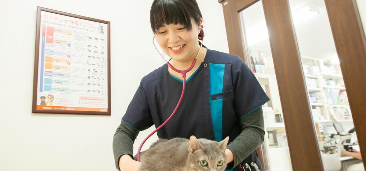 ペットと飼い主に寄り添う獣医師として学び続けます。