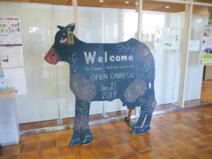 第3回オープンキャンパスレポート!