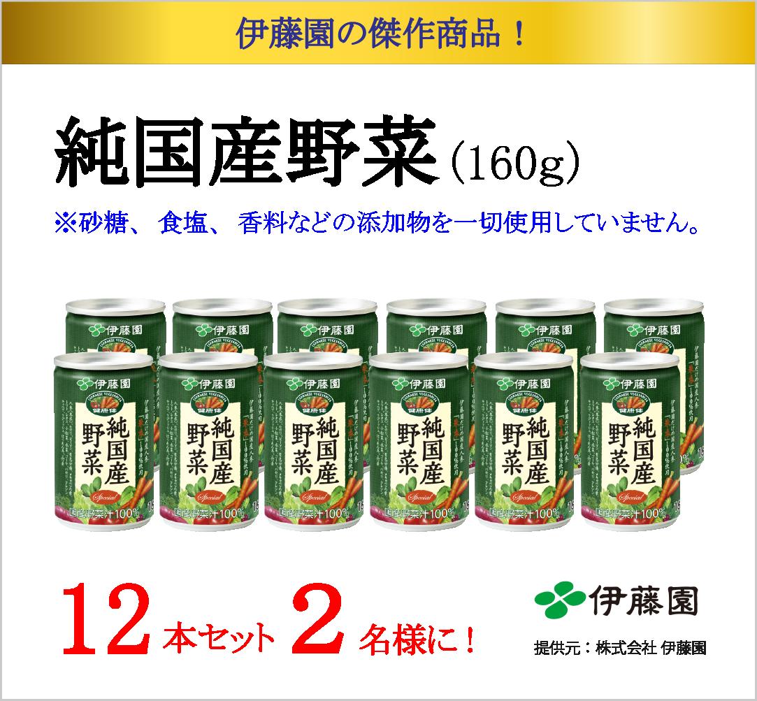 伊藤園 純国産野菜