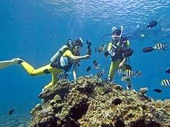 沖縄青の洞窟ビーチシュノーケリング・おすすめ・観光