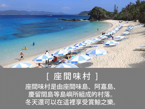 座間味村 座間味村是由座間味島、阿嘉島、慶留間島等島嶼所組成的村落。冬天還可以在這裡享受賞鯨之樂。