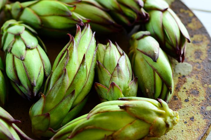 Series / Island Blessing, Island Taste Part 35, Dragon Fruit