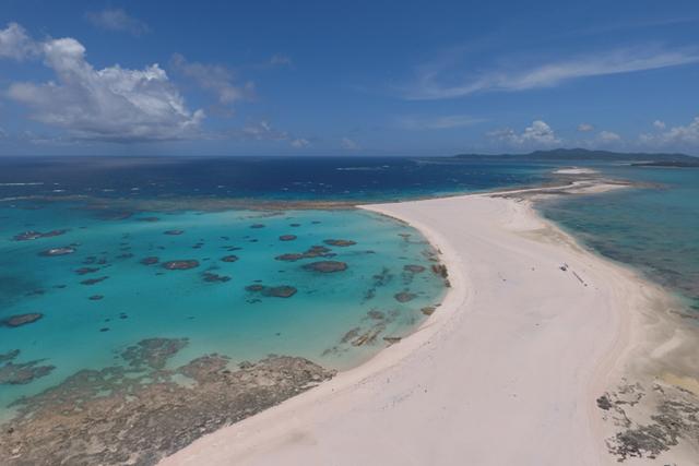 [The World of Sea of Okinawa] Snorkeling Tour to Enjoy