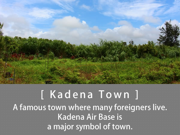 Kadena Town A famous town where many foreigners live. Kadena Air Base is a major symbol of town.