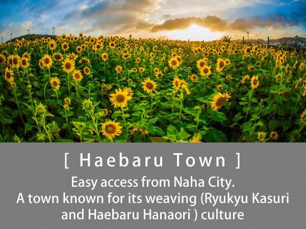 Haebaru Town Easy access from Naha City. A town known for its weaving (Ryukyu Kasuri and Haebaru Hanaori ) culture