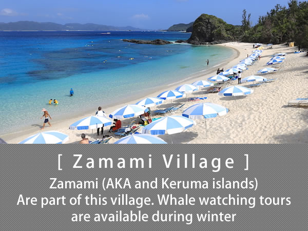 Zamami Village Zamami (AKA and Keruma islands) Are part of this village. Whale watching tours are available during winter