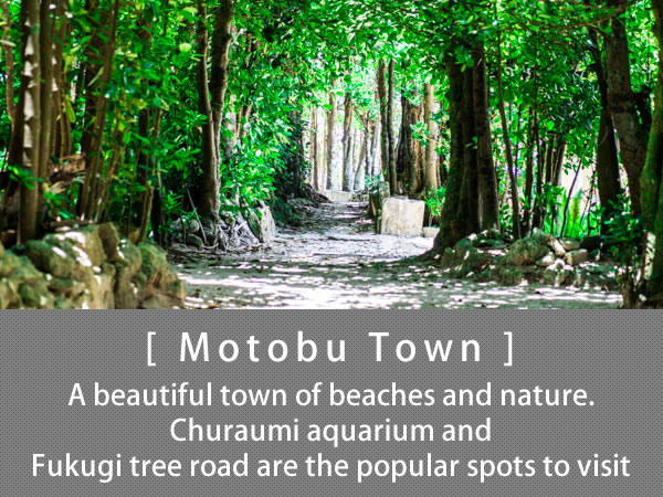 Motobu Town A beautiful town of beaches and nature. Churaumi aquarium and Fukugi tree road are the popular spots to visit
