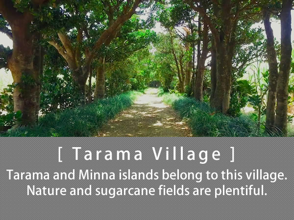 Tarama Village Tarama and Minna islands belong to this village. Nature and sugarcane fields are plentiful.