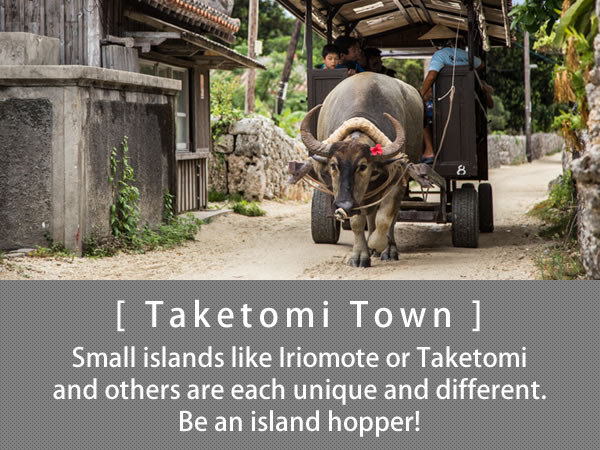 Taketomi Town Small islands like Iriomote or Taketomi and others are each unique and different. Be an island hopper!