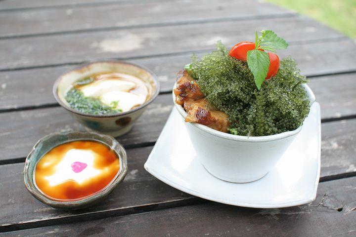 Enjoy Your Lunch Here on the Way to Churaumi Aquarium! Cafés in Motobu Town