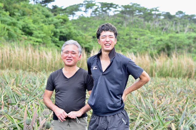 There's a good reason behind the delicious taste! Okinawan pineapples nurtured and grown by a father and son team (Nago City).