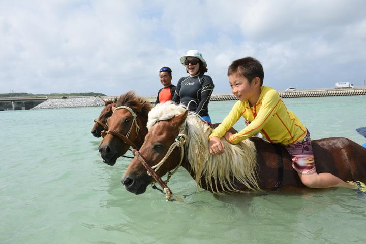 海の中で馬にまたがっている写真