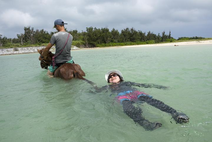 しっぽにしがみつき海を泳ぐ写真