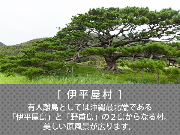 伊平屋村 有人離島としては沖縄最北端である「伊平屋島」と「野甫島」の2島からなる村。美しい原風景が広がります。