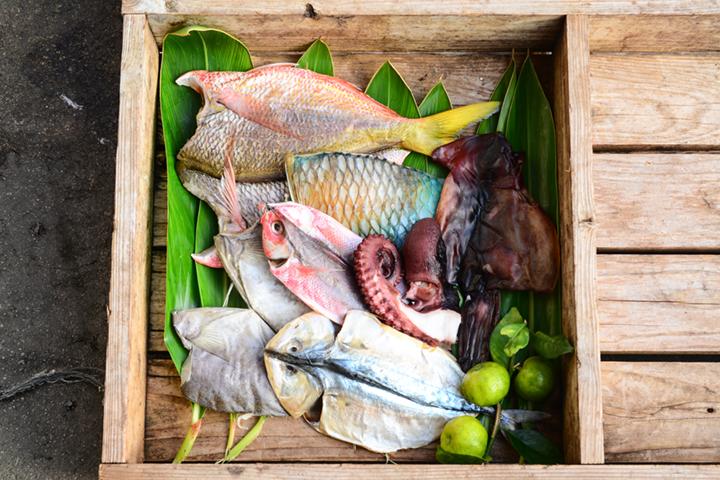 連載/島の恵み、島の味 その37 島魚(しまいゆ)の干物①