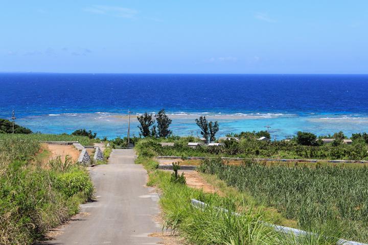高台から望む絶景を独り占めできる「PANORAMA OCEAN VIEW COTTAGE」(本部町)