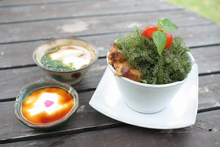 緑豊かな癒しカフェ「フウカフェ」