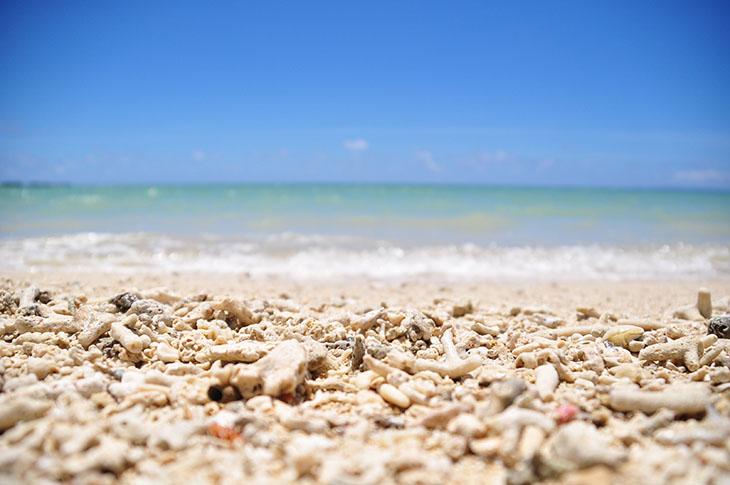 最後まで沖縄の海を楽しみましょう