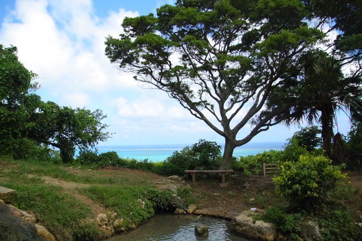 垣花樋川(かきのはなひーじゃー)は沖縄のパワースポット