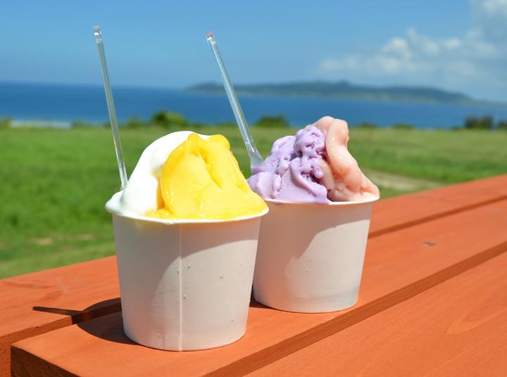 ミルミル本舗は、石垣島にある丘の上のおいしいジェラート屋さん|沖縄CLIP