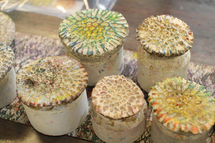 サンゴの化石を使います