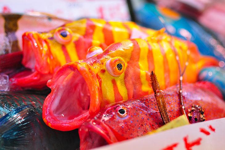 牧志公設市場は沖縄の台所